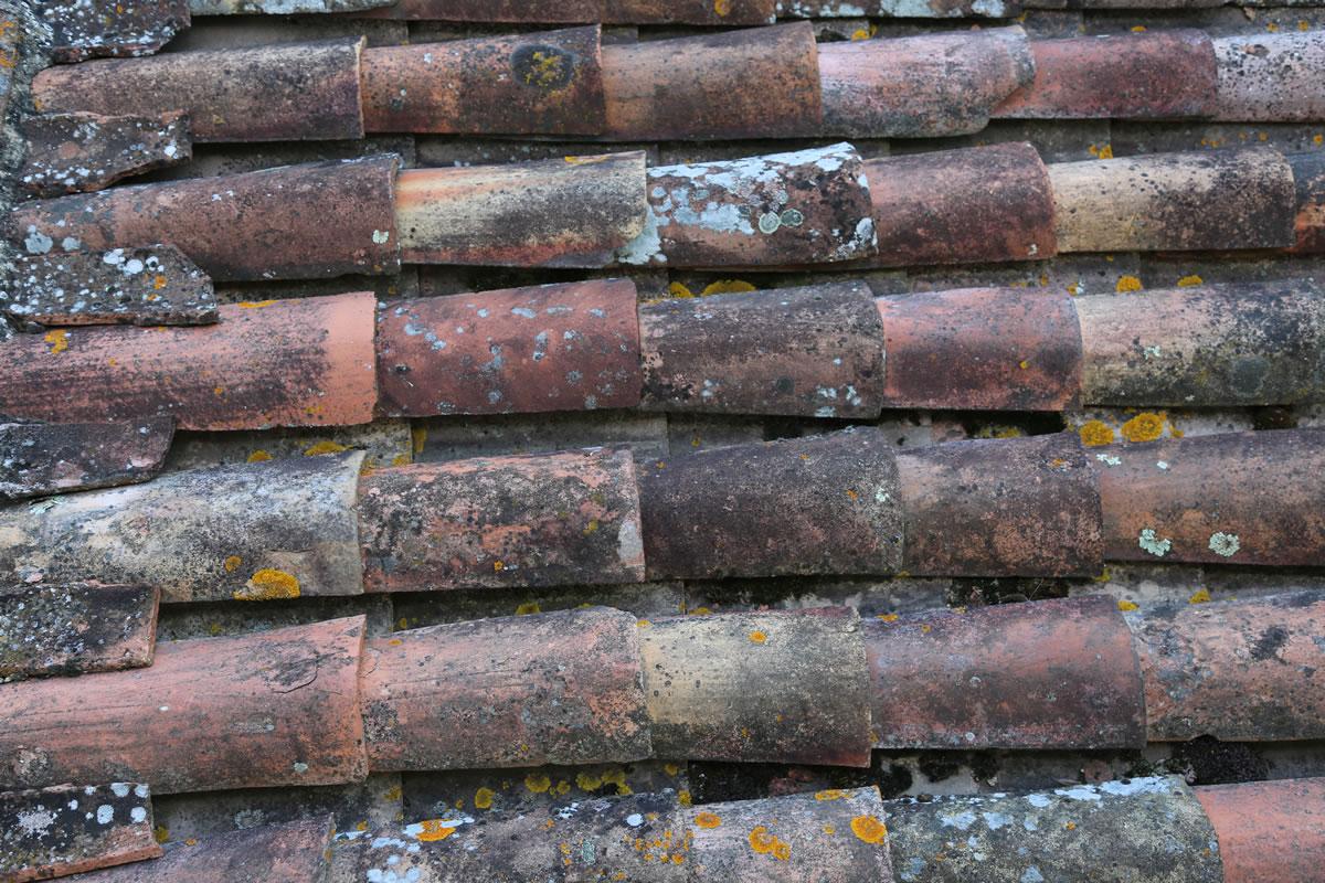 pl16 - roof tiles, Bergerac